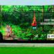 Ônibus personalizado alerta sobre a extinção de espécies animais