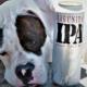 Cervejaria faz campanha para ajudar a encontrar cães perdidos
